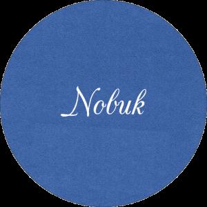 BOTON_NOBUK
